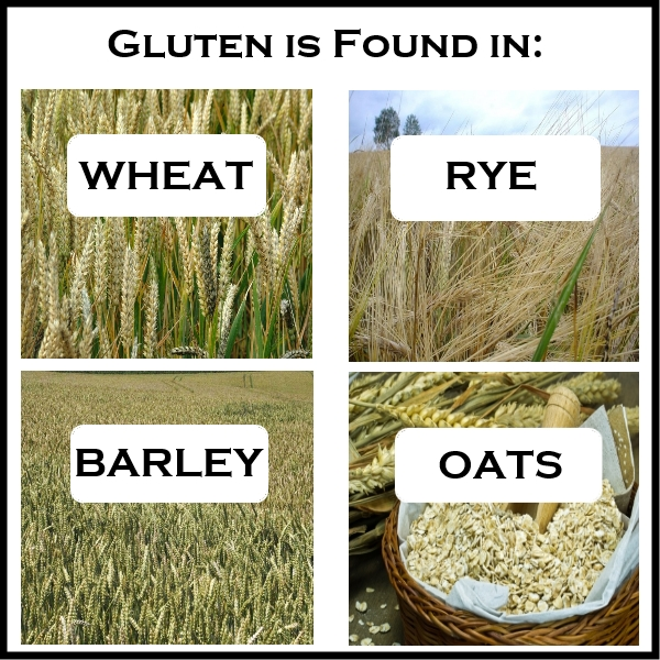 Foods That Contain Rye