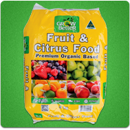 Fruit Citrus