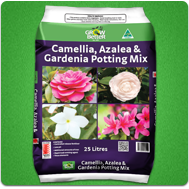 Camellia Azalea Gardenia Potting Mix